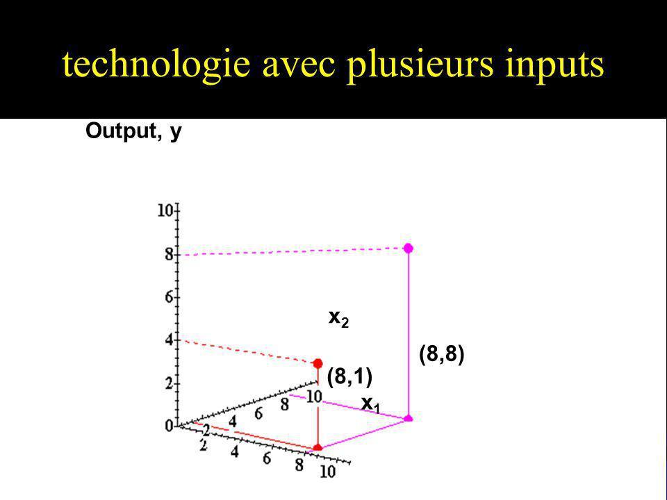 Technologies à plusieurs Inputs u Lisoquante associée à la quantité doutput y est lensemble de toutes les combinaisons de quantités dinputs permettant de produire au maximum y unités doutput.
