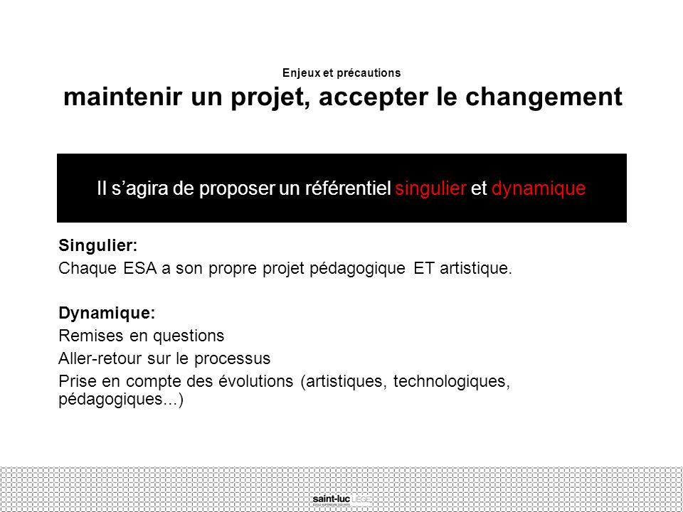 Enjeux et précautions maintenir un projet, accepter le changement Singulier: Chaque ESA a son propre projet pédagogique ET artistique. Dynamique: Remi