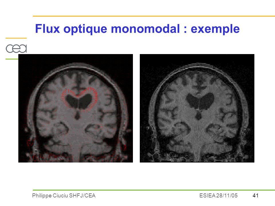 41Philippe Ciuciu SHFJ/CEAESIEA 28/11/05 Flux optique monomodal : exemple