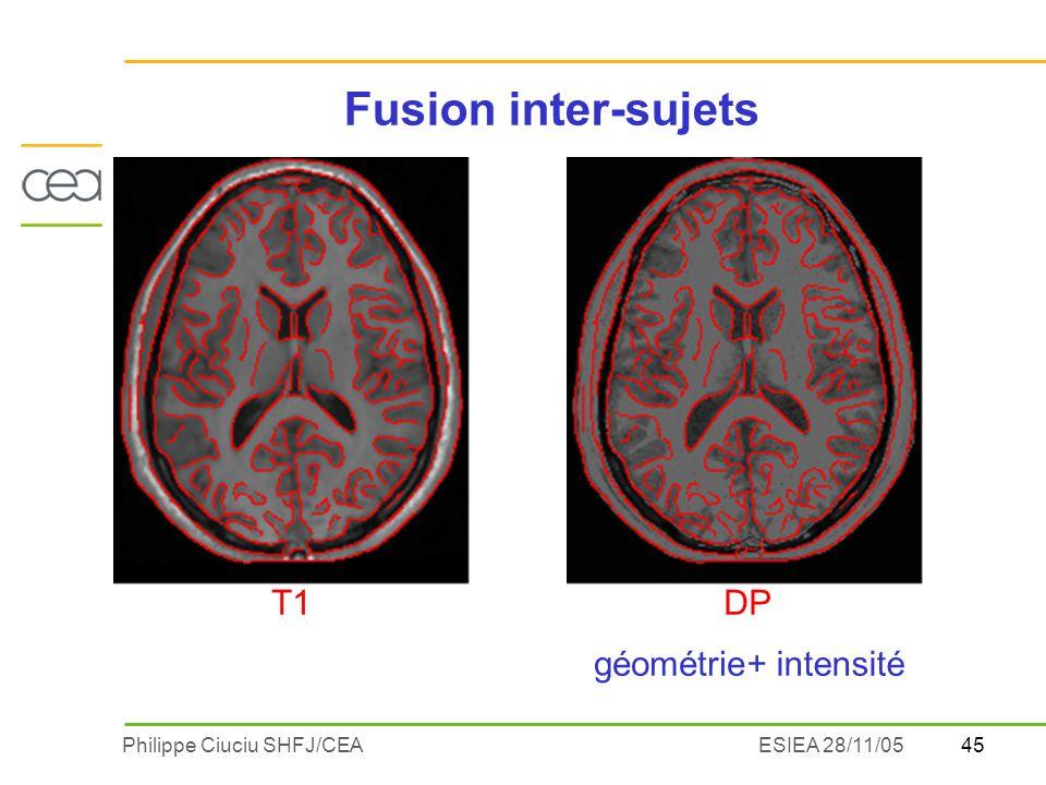 45Philippe Ciuciu SHFJ/CEAESIEA 28/11/05 DPT1 géométrie+ intensité Fusion inter-sujets