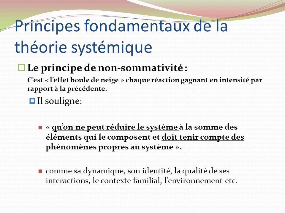 Principes fondamentaux de la théorie systémique Le principe de non-sommativité : Cest « leffet boule de neige » chaque réaction gagnant en intensité p