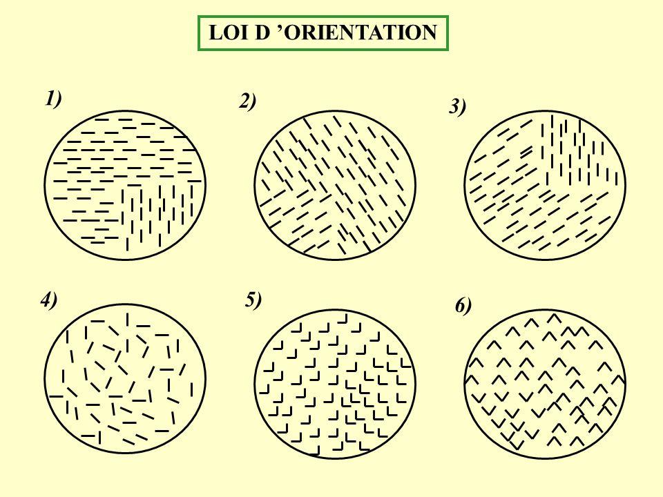 LOI D ORIENTATION 1) 2) 3) 4)5) 6)