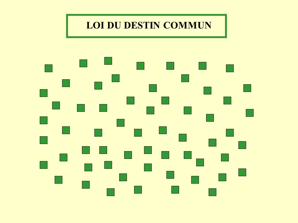 LOI DU DESTIN COMMUN