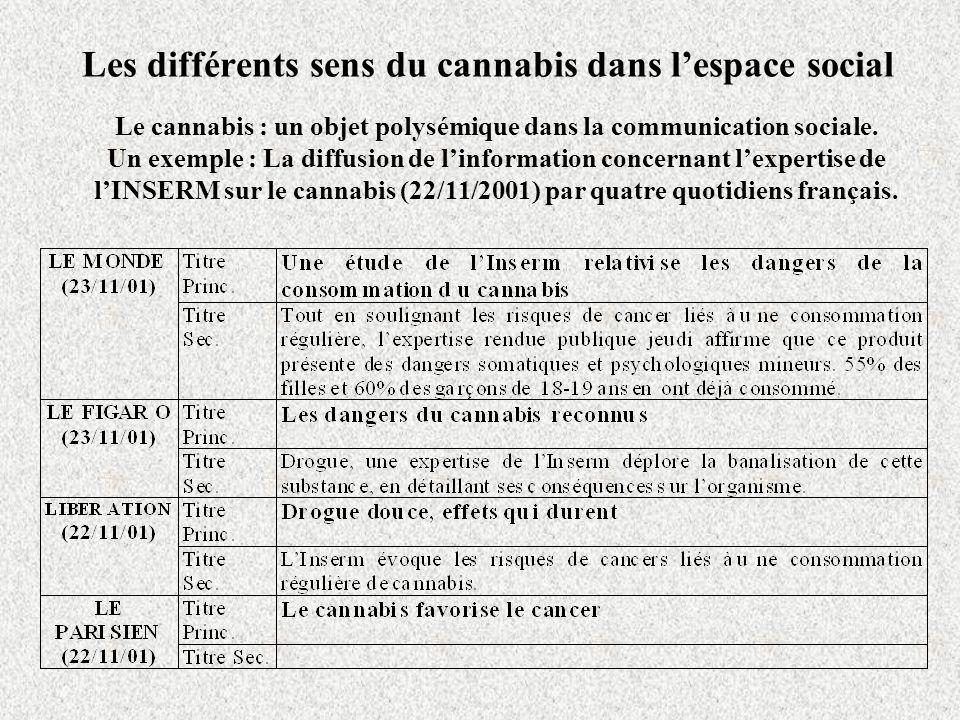 Les différents sens du cannabis dans lespace social Le cannabis : un objet polysémique dans la communication sociale.