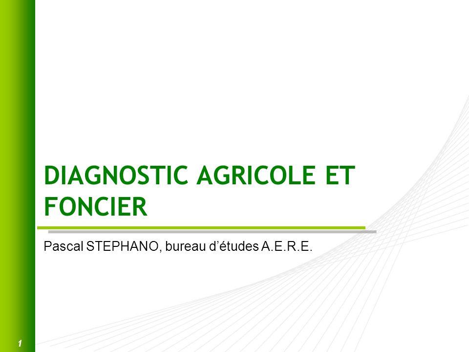 DIAGNOSTIC AGRICOLE ET FONCIER Pascal STEPHANO, bureau détudes A.E.R.E. 1
