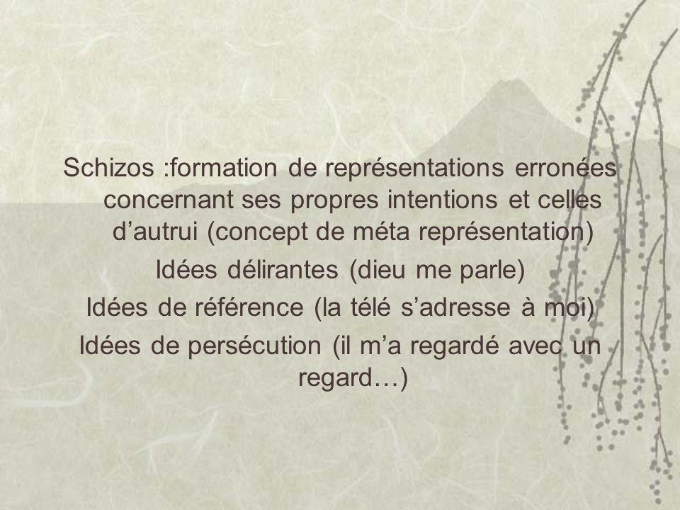 Schizos :formation de représentations erronées concernant ses propres intentions et celles dautrui (concept de méta représentation) Idées délirantes (dieu me parle) Idées de référence (la télé sadresse à moi) Idées de persécution (il ma regardé avec un regard…)