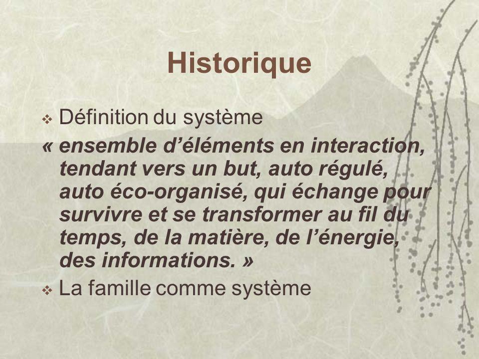 Historique Définition du système « ensemble déléments en interaction, tendant vers un but, auto régulé, auto éco-organisé, qui échange pour survivre et se transformer au fil du temps, de la matière, de lénergie, des informations.