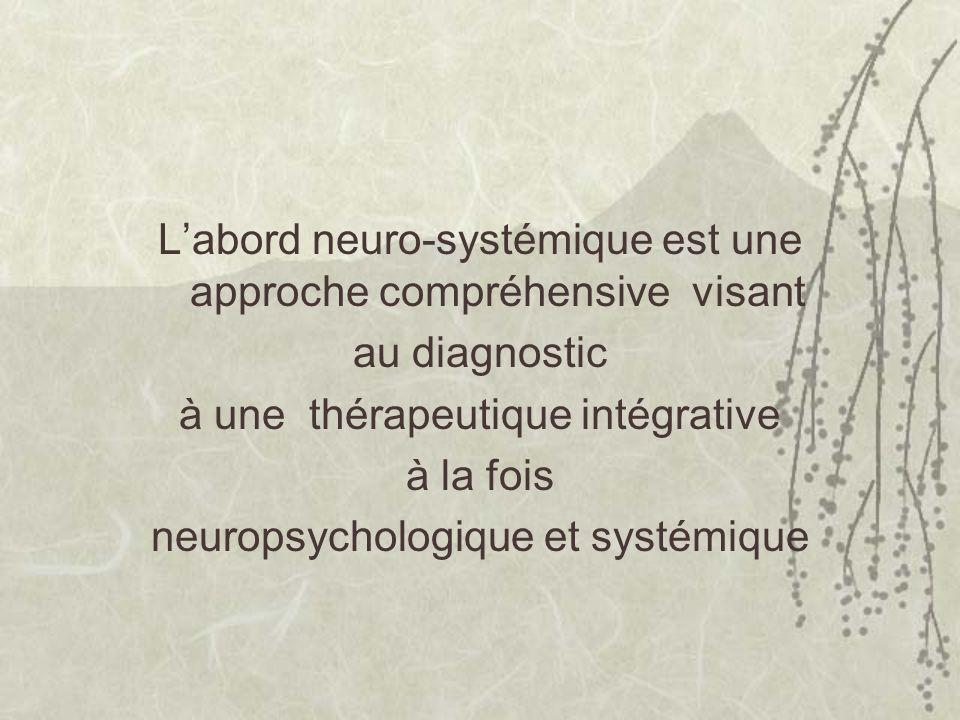 Labord neuro-systémique est une approche compréhensive visant au diagnostic à une thérapeutique intégrative à la fois neuropsychologique et systémique