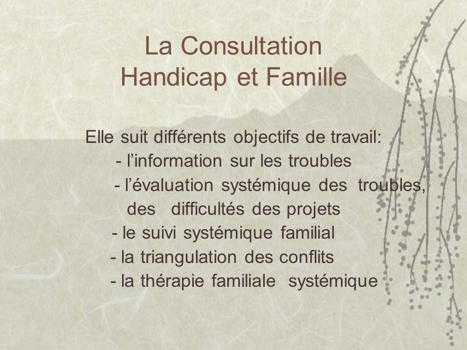 La Consultation Handicap et Famille Elle suit différents objectifs de travail: - linformation sur les troubles - lévaluation systémique des troubles,