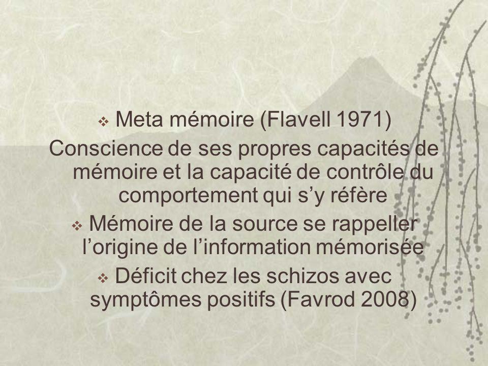 Meta mémoire (Flavell 1971) Conscience de ses propres capacités de mémoire et la capacité de contrôle du comportement qui sy réfère Mémoire de la source se rappeller lorigine de linformation mémorisée Déficit chez les schizos avec symptômes positifs (Favrod 2008)