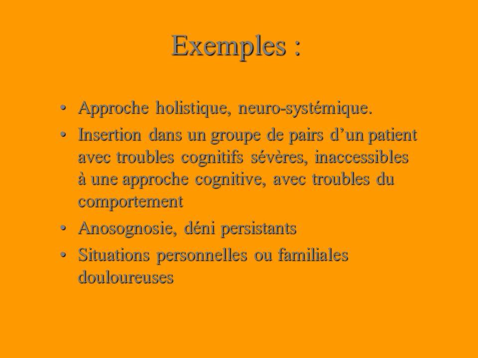 Exemples : Approche holistique, neuro-systémique.Approche holistique, neuro-systémique. Insertion dans un groupe de pairs dun patient avec troubles co