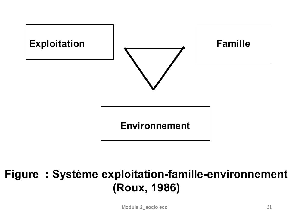Module 2_socio eco21 Famille Environnement Exploitation Figure : Système exploitation-famille-environnement (Roux, 1986)