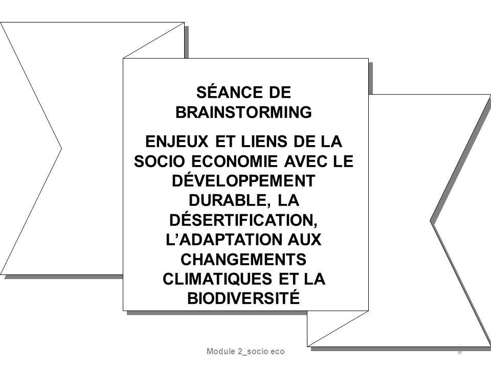 6 SÉANCE DE BRAINSTORMING ENJEUX ET LIENS DE LA SOCIO ECONOMIE AVEC LE DÉVELOPPEMENT DURABLE, LA DÉSERTIFICATION, LADAPTATION AUX CHANGEMENTS CLIMATIQ