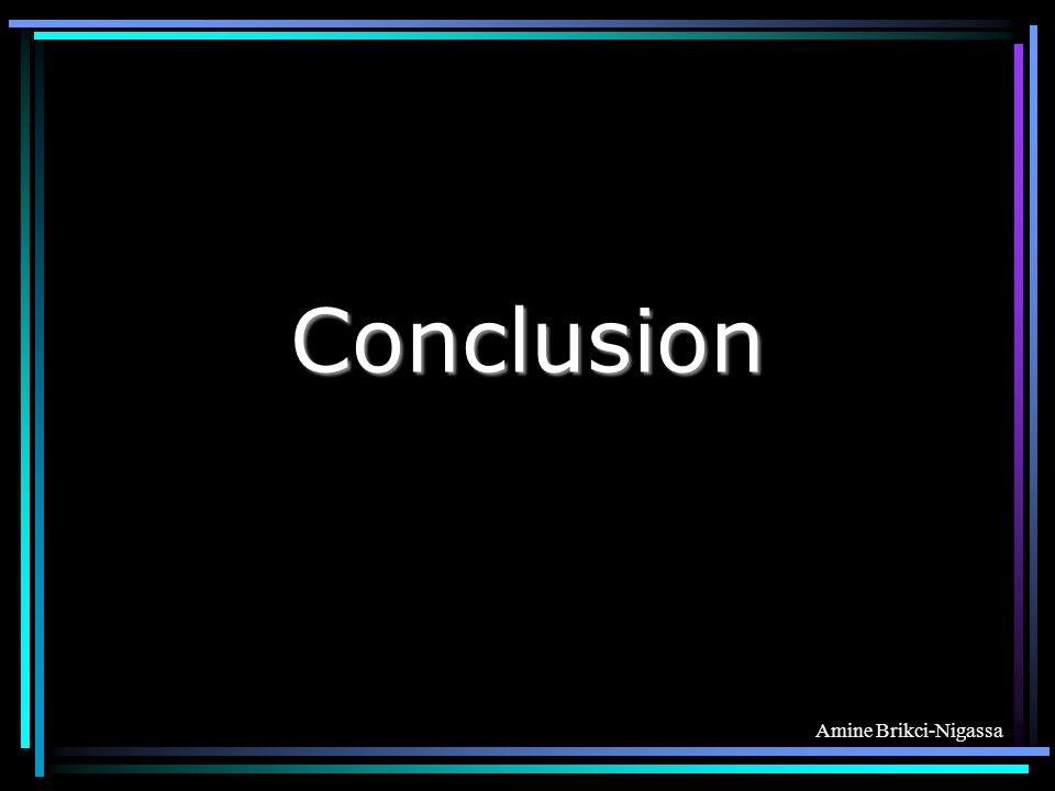 Amine Brikci-Nigassa Conclusion
