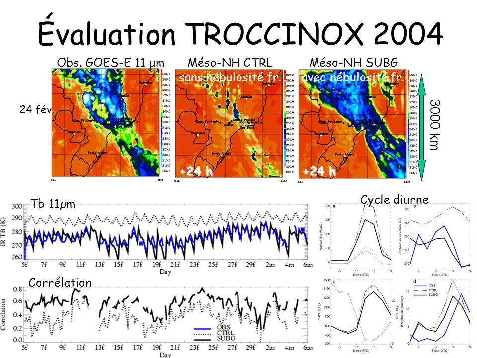 Évaluation TROCCINOX 2004 +24 h Méso-NH CTRL sans nébulosité fr. Méso-NH SUBG avec nébulosité fr. Obs. GOES-E 11 μm 24 fév. +24 h 3000 km Corrélation