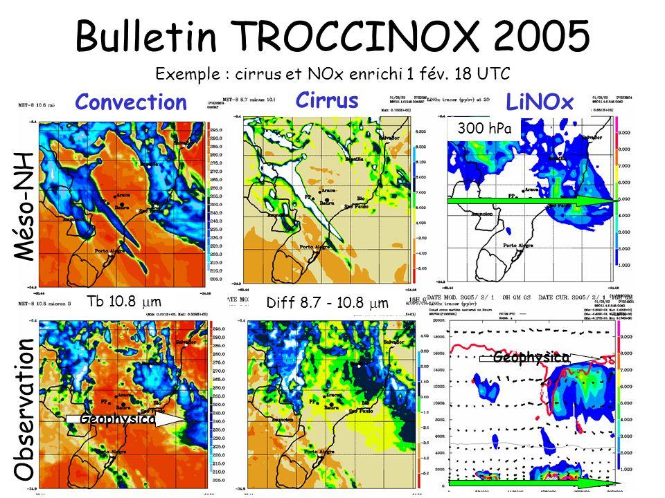Bulletin TROCCINOX 2005 Méso-NH Observation Exemple : cirrus et NOx enrichi 1 fév. 18 UTC Tb 10.8 m 300 hPa Diff 8.7 - 10.8 m LiNOx Cirrus Convection