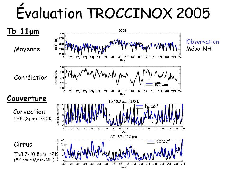Évaluation TROCCINOX 2005 Cirrus Tb8.7-10,8μm >2K (8K pour Méso-NH) Convection Tb10,8μm< 230K Corrélation Moyenne Tb 11μm Observation Méso-NH Couvertu