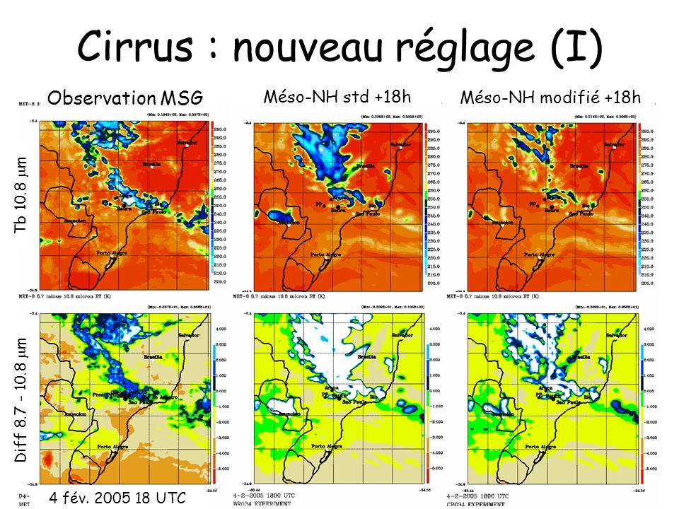 Cirrus : nouveau réglage (I) Observation MSG Méso-NH std +18h Diff 8.7 - 10.8 m Tb 10.8 m Méso-NH modifié +18h 4 fév. 2005 18 UTC