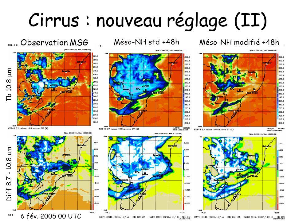 Cirrus : nouveau réglage (II) Méso-NH modifié +48h Tb 10.8 m Diff 8.7 - 10.8 m Méso-NH std +48h Observation MSG 6 fév. 2005 00 UTC
