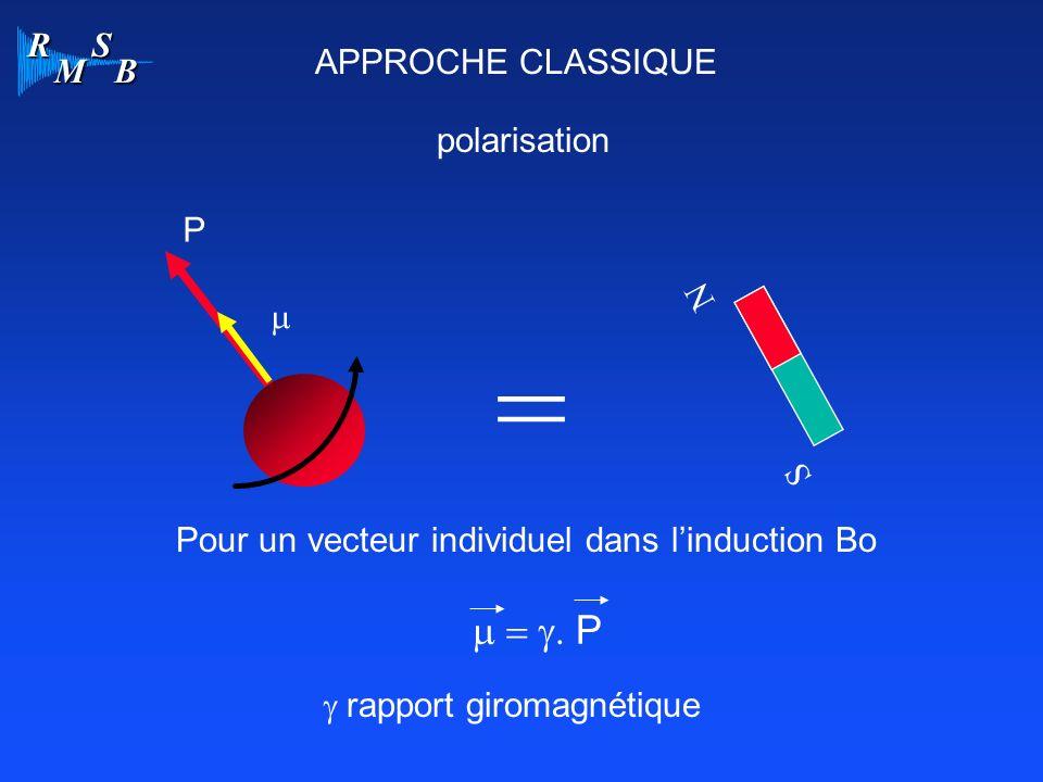 R M S B APPROCHE CLASSIQUE polarisation = N S P Pour un vecteur individuel dans linduction Bo rapport giromagnétique P