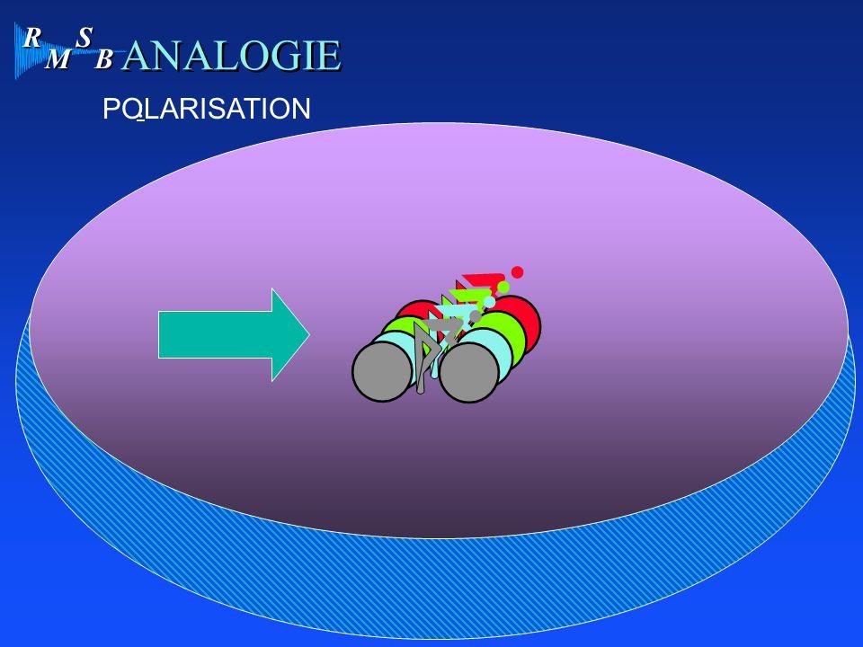 R M S B ANALOGIE : POLARISATION
