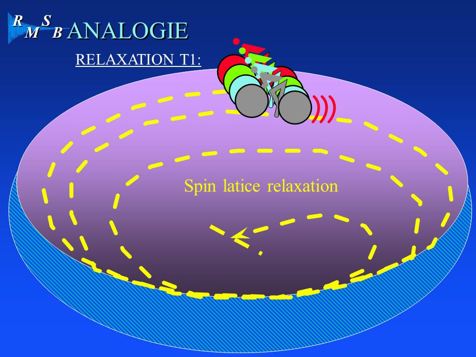 R M S B ANALOGIE RELAXATION T1: Spin latice relaxation