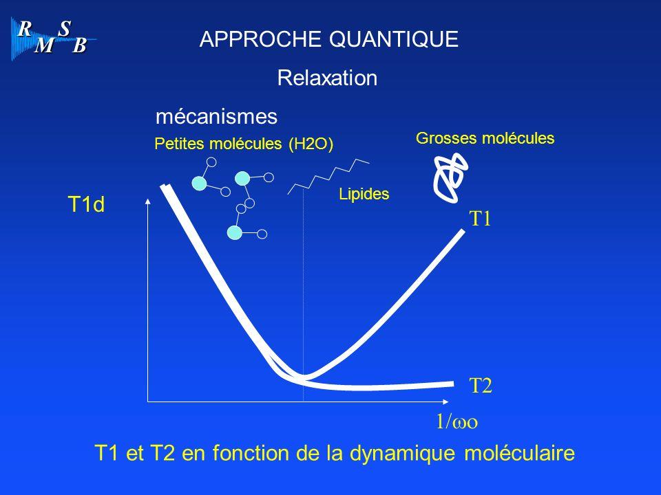 R M S B APPROCHE QUANTIQUE Relaxation mécanismes Grosses molécules T1 T2 T1d 1/ Petites molécules (H2O) Lipides T1 et T2 en fonction de la dynamique m