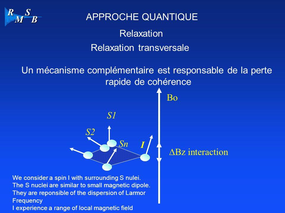 R M S B APPROCHE QUANTIQUE Relaxation Relaxation transversale Un mécanisme complémentaire est responsable de la perte rapide de cohérence Bo Bz interaction I S1 S2 Sn Inter-action Spin-Spin We consider a spin I with surrounding S nulei.