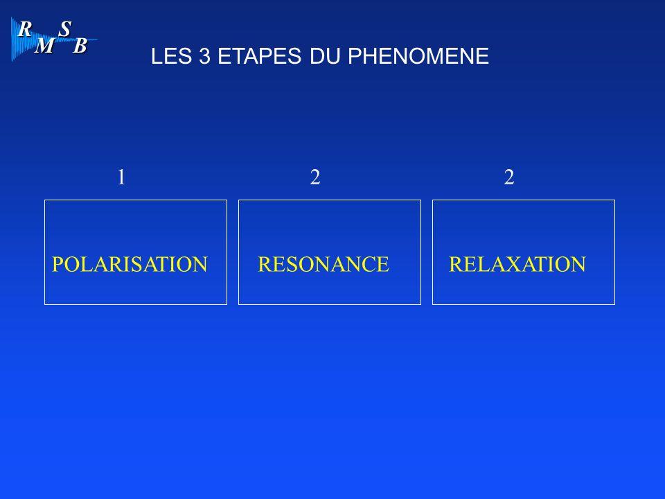 R M S B 1 POLARISATIONRELAXATION 2 RESONANCE 2 LES 3 ETAPES DU PHENOMENE