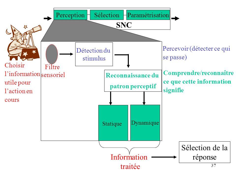 37 SNC SélectionParamétrisationPerception Détection du stimulus Reconnaissance du patron perceptif Statique Dynamique Filtre sensoriel Information tra