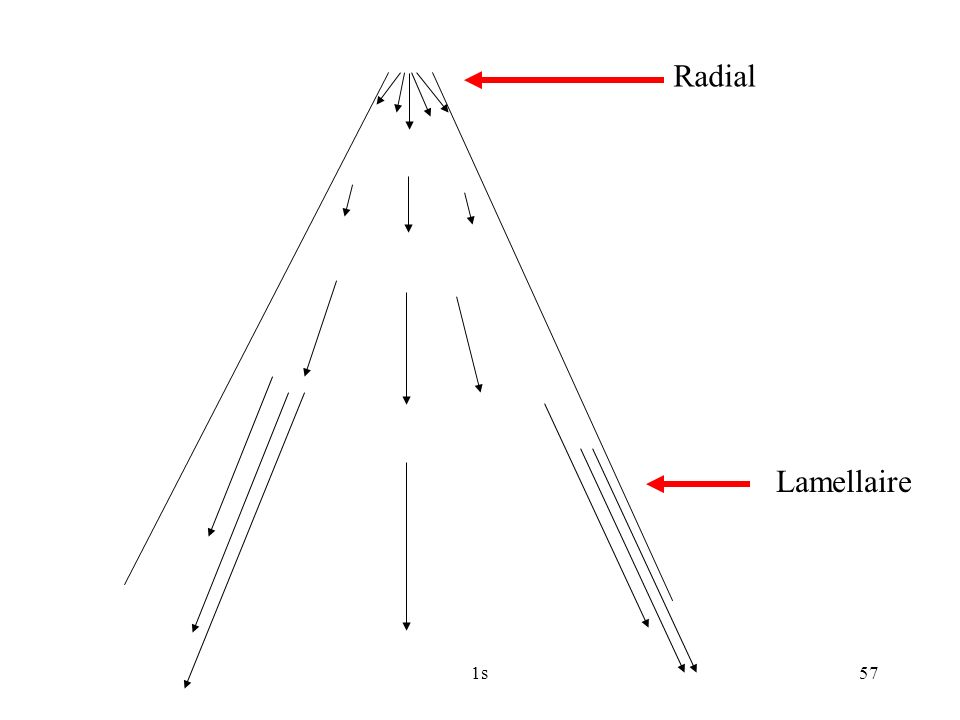 1s57 Radial Lamellaire