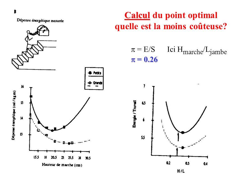 86 Calcul Calcul du point optimal quelle est la moins coûteuse? = E/S Ici H marche /L jambe = 0.26 = 0.26
