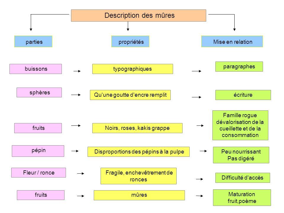 Description des mûres parties propriétés Mise en relation buissons sphères pépin fruits Fleur / ronce typographiques paragraphes Qu'une goutte d'encre
