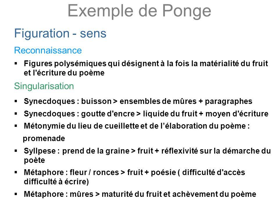 Exemple de Ponge Figuration - sens Reconnaissance Figures polysémiques qui désignent à la fois la matérialité du fruit et l'écriture du poème Singular