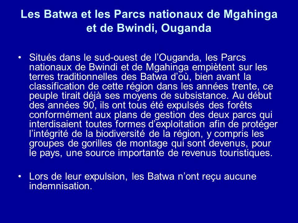 Les Batwa et les Parcs nationaux de Mgahinga et de Bwindi, Ouganda Situés dans le sud-ouest de lOuganda, les Parcs nationaux de Bwindi et de Mgahinga empiètent sur les terres traditionnelles des Batwa doù, bien avant la classification de cette région dans les années trente, ce peuple tirait déjà ses moyens de subsistance.