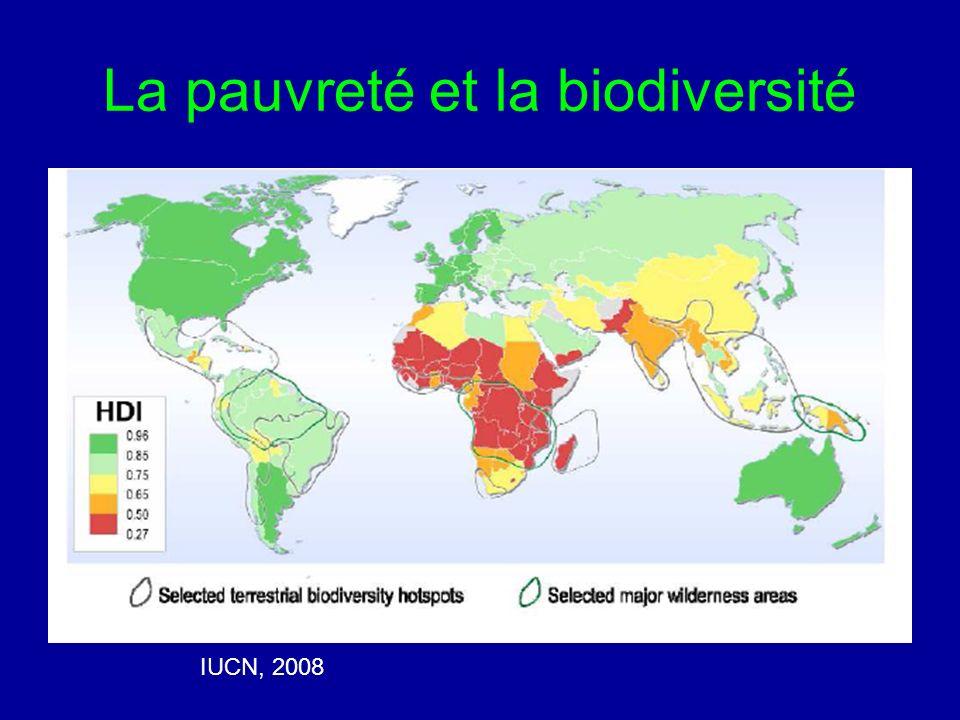 Environnement: impact de lexclusion L intensification de la pression sur les ressources naturelles en dehors des zones protégées Le déclin des écosystèmes Perte du sens de stewardship Perte des connaissances écologiques traditionnelles Perte des repères culturels associés à la forêt et à son caractère sacré Création de conflits et d aliénation