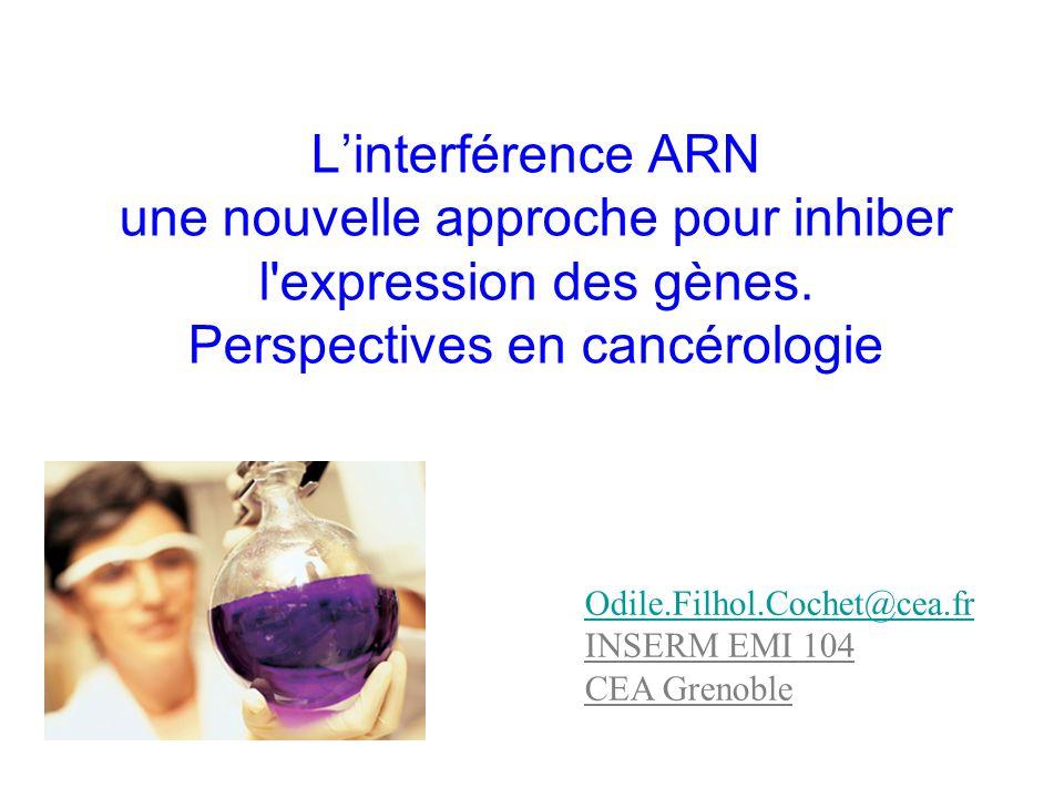 Linterférence ARN une nouvelle approche pour inhiber l'expression des gènes. Perspectives en cancérologie Odile.Filhol.Cochet@cea.fr INSERM EMI 104 CE