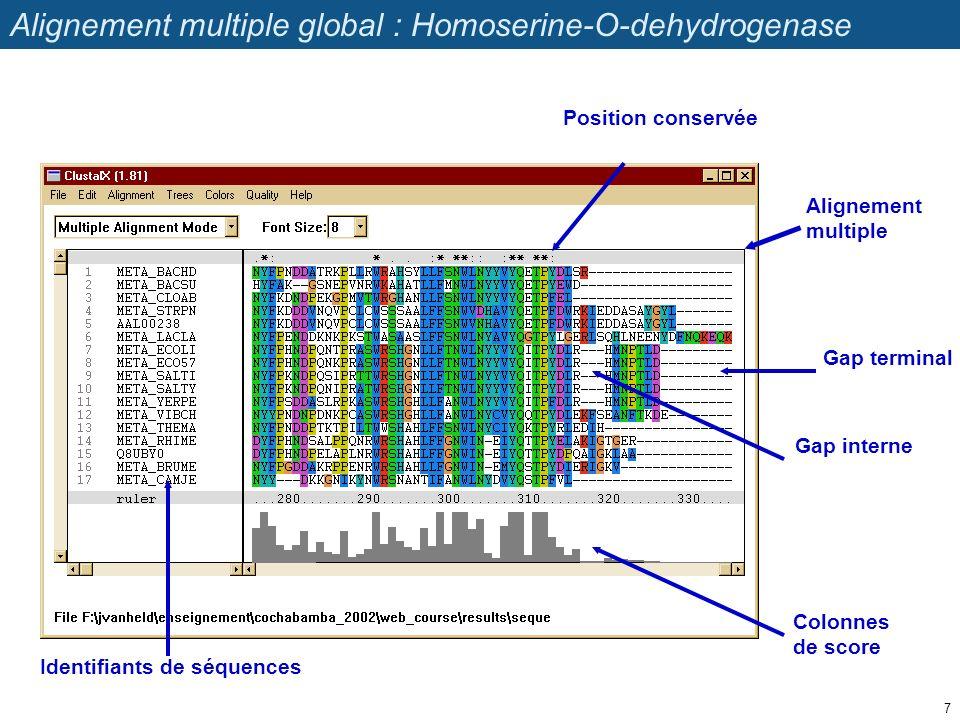 Alignement multiple Gap terminal Gap interne Colonnes de score Identifiants de séquences Position conservée Alignement multiple global : Homoserine-O-