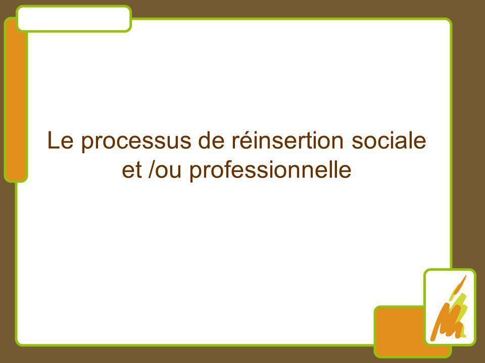 Le processus de réinsertion sociale et /ou professionnelle
