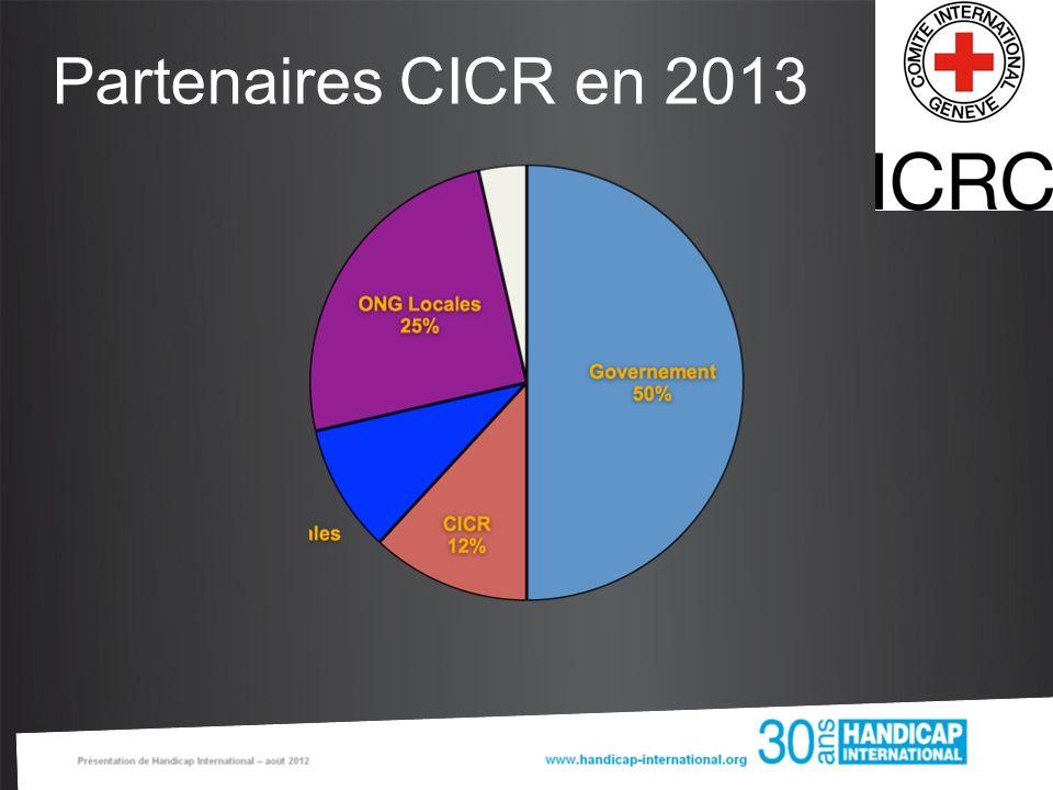 Partenaires CICR en 2013