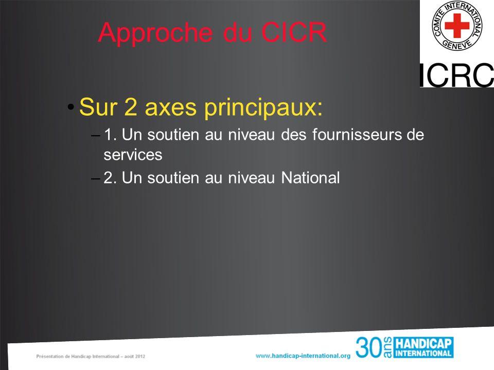 Approche du CICR Sur 2 axes principaux: –1. Un soutien au niveau des fournisseurs de services –2. Un soutien au niveau National