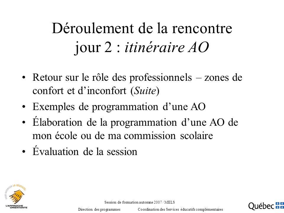 Déroulement de la rencontre jour 2 : itinéraire AO Retour sur le rôle des professionnels – zones de confort et dinconfort (Suite) Exemples de programm