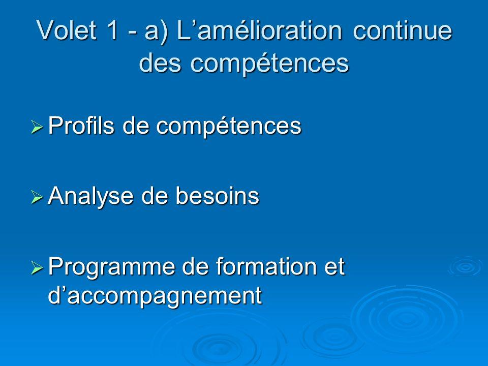 Volet 1 - a) Lamélioration continue des compétences Profils de compétences Profils de compétences Analyse de besoins Analyse de besoins Programme de formation et daccompagnement Programme de formation et daccompagnement