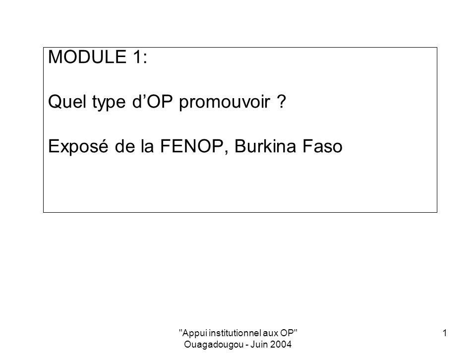 Appui institutionnel aux OP Ouagadougou - Juin 2004 1 MODULE 1: Quel type dOP promouvoir .