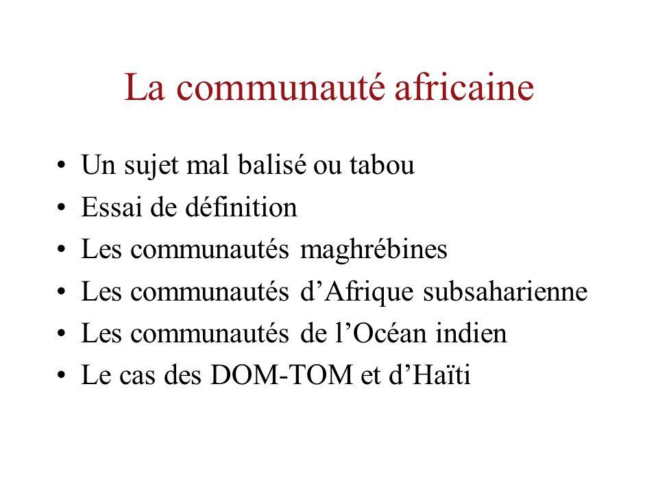 La communauté africaine Un sujet mal balisé ou tabou Essai de définition Les communautés maghrébines Les communautés dAfrique subsaharienne Les communautés de lOcéan indien Le cas des DOM-TOM et dHaïti