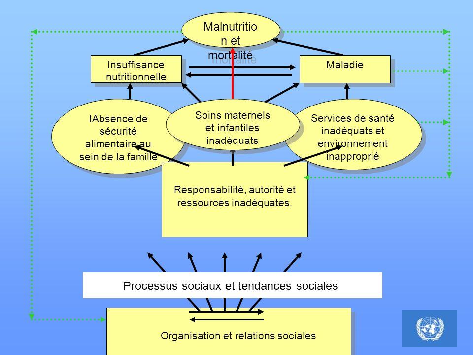 Malnutritio n et mortalité Insuffisance nutritionnelle Maladie IAbsence de sécurité alimentaire au sein de la famille Services de santé inadéquats et