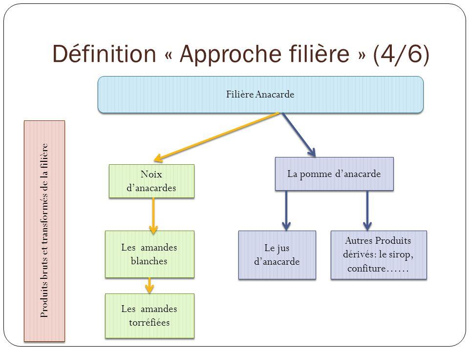 Définition « Approche filière » (6/6) Du point de vue économique: Une filière agricole peut être considérée comme un mode de découpage du système productif privilégiant les relations dinterdépendance.