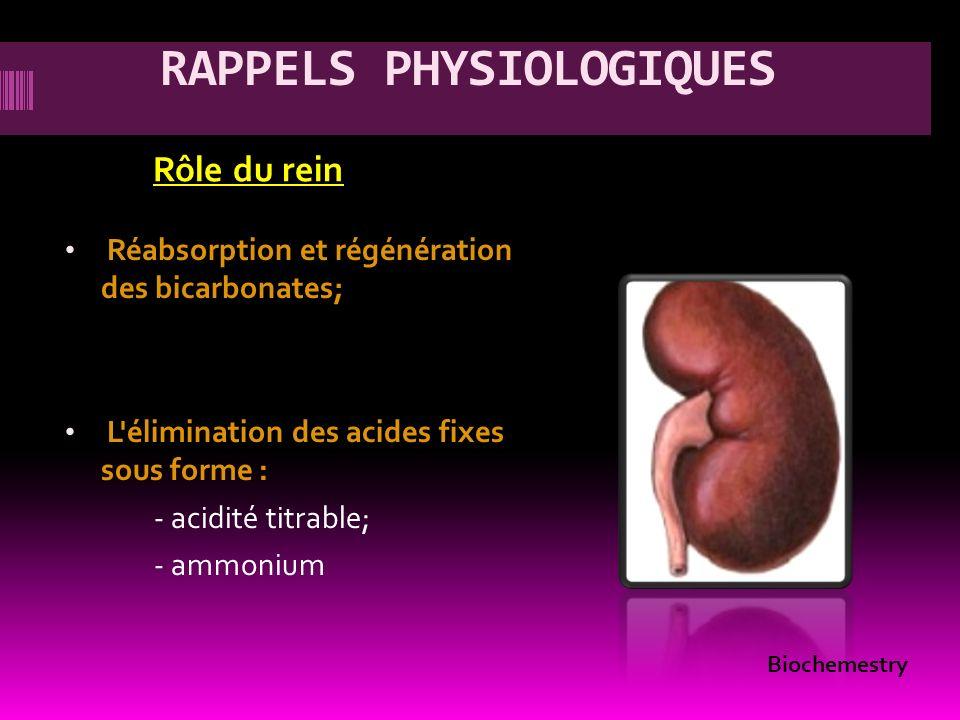 RAPPELS PHYSIOLOGIQUES Rôle du rein Réabsorption et régénération des bicarbonates; L'élimination des acides fixes sous forme : - acidité titrable; - a