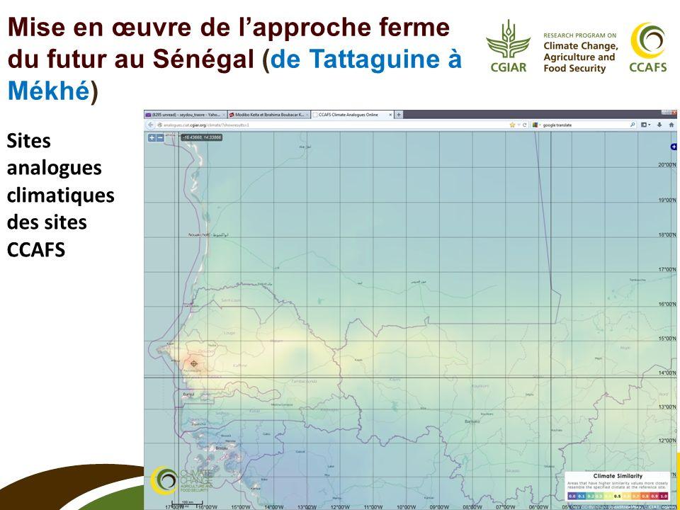 10 Mise en œuvre de lapproche ferme du futur au Sénégal (de Tattaguine à Mékhé) Sites analogues climatiques des sites CCAFS