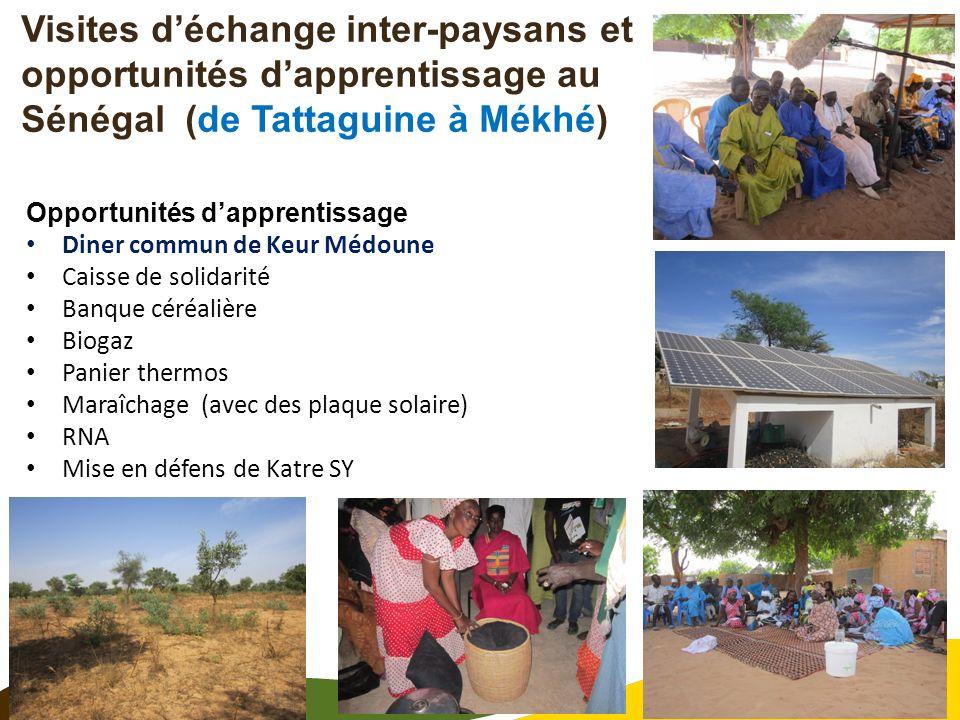 11 Visites déchange inter-paysans et opportunités dapprentissage au Sénégal (de Tattaguine à Mékhé) Opportunités dapprentissage Diner commun de Keur M